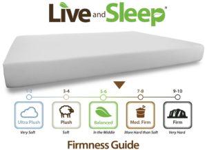 Resort Sleep Queen Size 10-Inch